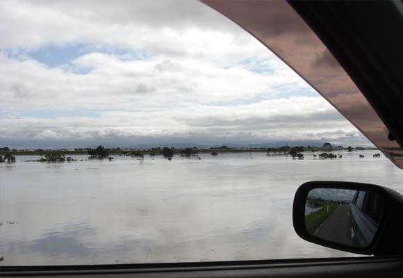 新潟大雨7月30日の信濃川